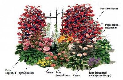 Оригинальный цветник с лилиями и розами