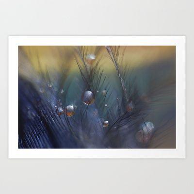 #macro #dewdrops #feather  Taking Chances Art Print by Marisa M. Johnson