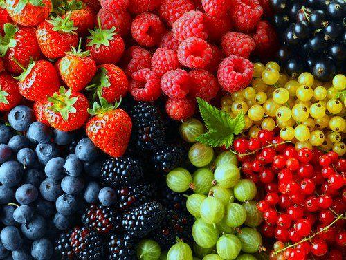ovoce - moře