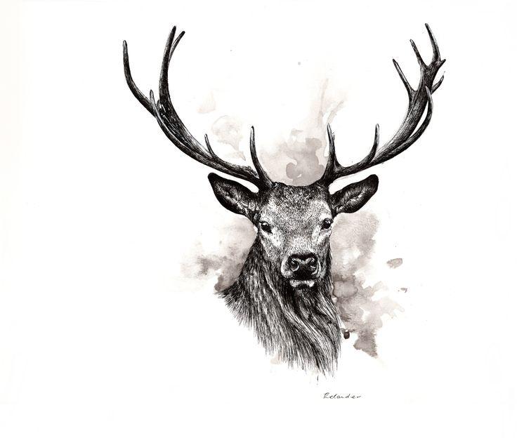 Stag - ORIGINAL - 110€ Illustration by Ariane Relander