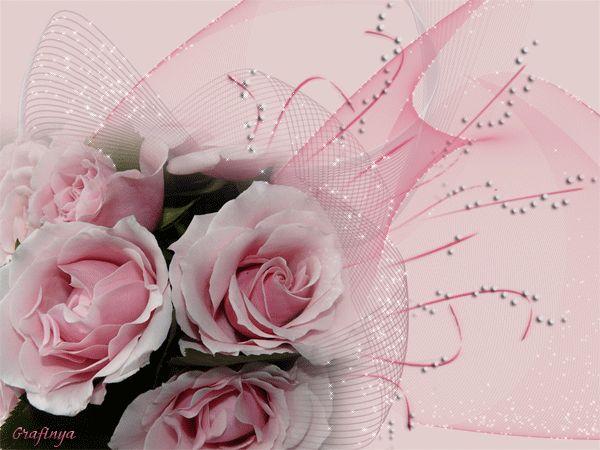 tolles die magie der bulgarischen rose eingebung images und eeededcafbebecabda s anim c as animated s