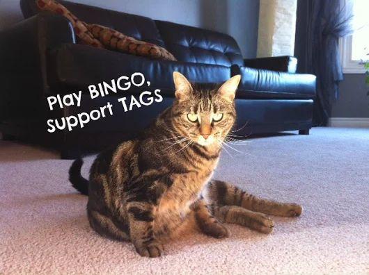 BINGO AT THE RED BARN CHARITY BINGO HALL | Facebook