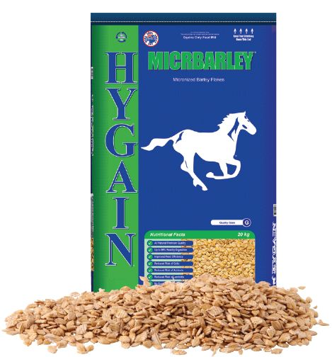 Premium quality, all natural, micronized barley that requires no soaking or cracking with the goodness sealed in. HYGAIN® MICRBARLEY® flakes are readily digestible with improved feed efficiency and reduced risk of colic, acidosis and laminitis. #horse #feed #diet #grain #barley