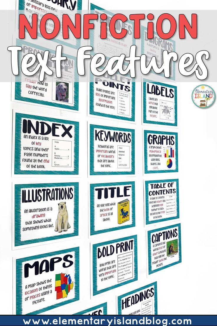 small resolution of Nonfiction Text Features Worksheets and Posters   Text features worksheet