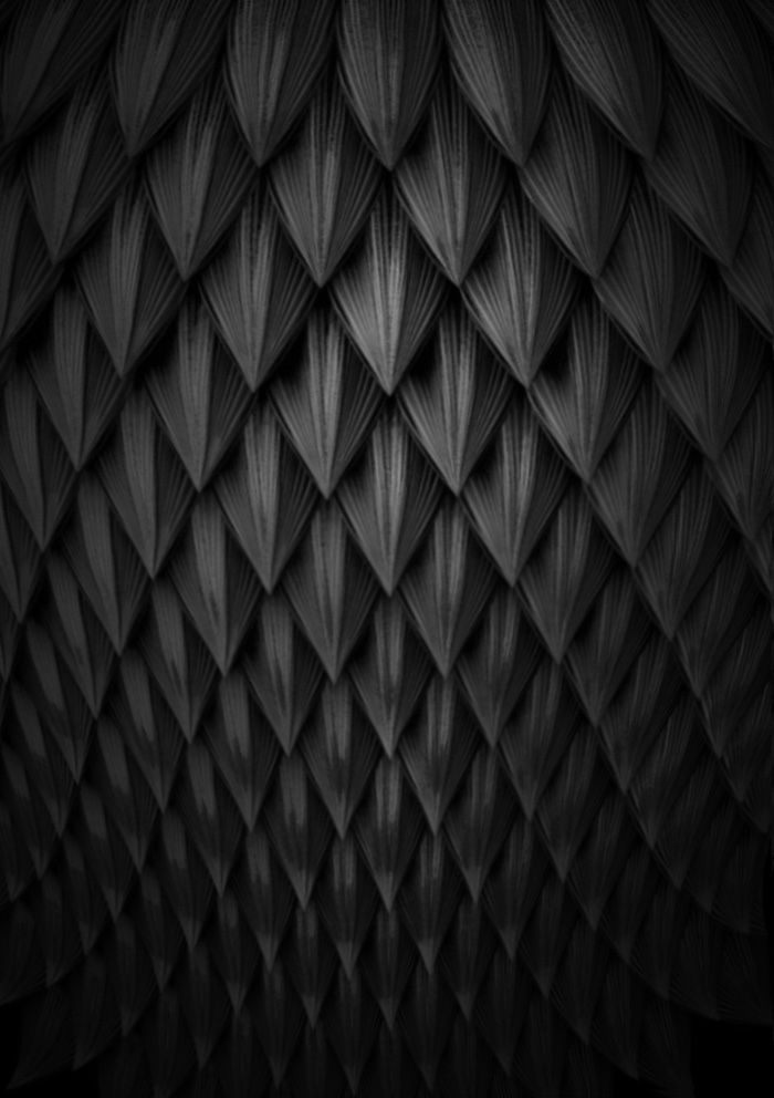 ☾ Midnight Dreams ☽  dreamy & dramatic black and white photography - scales by: Gabriel Zambrano
