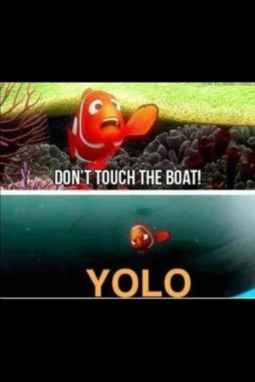 hahaha, this is great.Yolo, Laugh, Quotes, Findingnemo, Funny Stuff, Things, Disney, Finding Nemo, Mottos