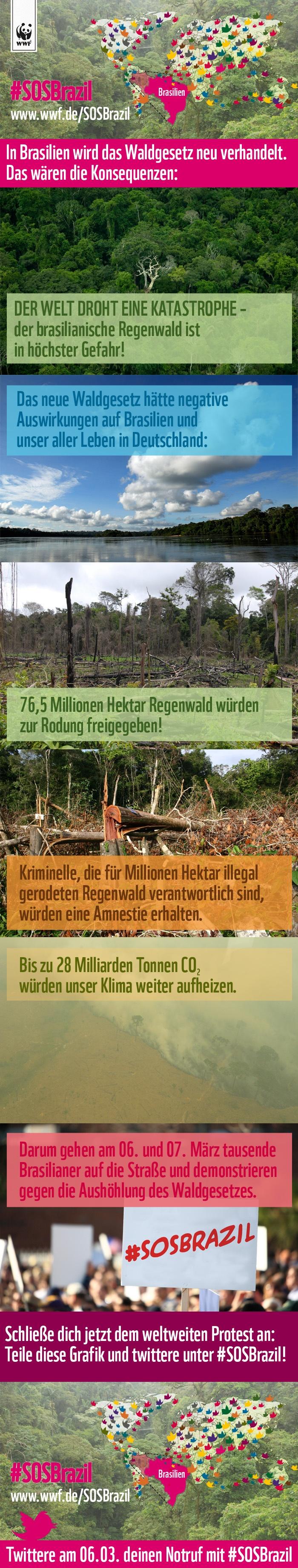 Sagt NEIN zu den Änderungen des brasilianischen Waldgesetzes und schließt euch jetzt den Demonstrationen in Brasilien und dem weltweiten Protest auf Twitter an!    Geht auf http://wwf.de/SOSBrazil und twittert mit #SOSBrazil     Wir wollen Trending Topic werden, damit so viele Menschen von diesem Gesetz erfahren wie möglich und den Politikern in Brasilien ein klares Zeichen übermitteln.    Helft der Welt und verbreitet diese Grafik soweit wie möglich!