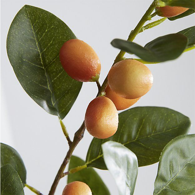 Shop Faux Orange Tree Branch.  Amid its glossy leaves,  our faux stem bursts with a bounty of small, luscious oranges.   Striking on its own or in an arrangement, it adds a bright, summery note to the room.