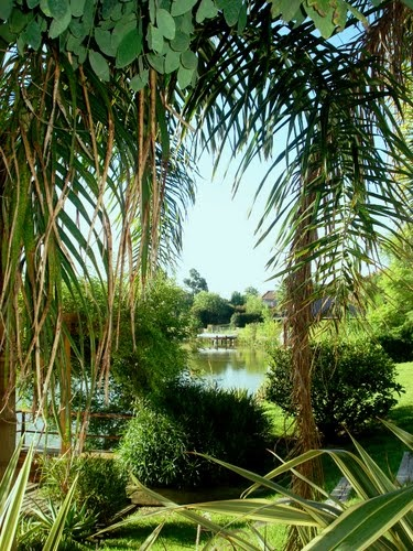 Head out of the city and to Tigre, a small town in the greater Buenos Aires province. Here you can take river cruises and admire all this greenery!