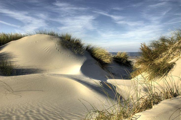 Dunes de sable Oleron. ©Regional Council of Poitou Charentes