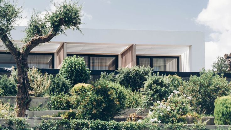 Block 722 Architects - Zante Maris Suites - Garden