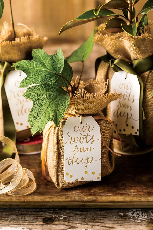 The Perfect Party Favor - Your Favorite Pins of 2016 - Southernliving. Send guests home with a souvenir that represents a slice of the South and gives them something they'll enjoy long after the party's over. We set out seedlings, bundled in burlap sacks, for guests to take home and plant for our 50th anniversary shindig.  See the Pin.