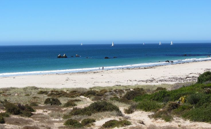 SUMMER SAILS - This is one of our favorite things about summer; stunning sailboats cutting through the perfect turquoise waters of the West Coast ~ exuding dreams of adventure....simply stunning!!!  http://www.absolutebeach.co.za/  #sailing #southafrica #summertime #beachlife