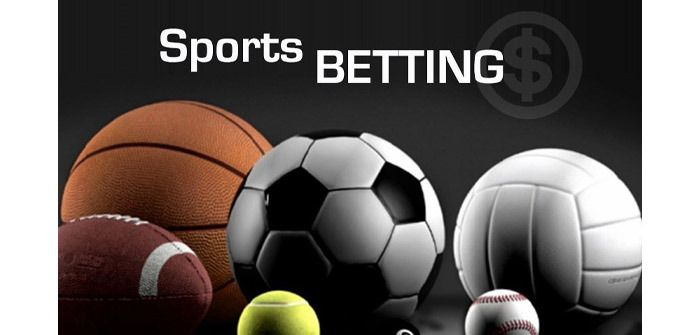 Betting information sports dog racing betting advice college