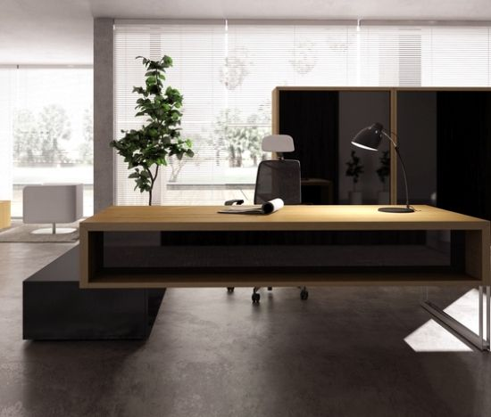 Ideas for office furniture design for the modern study of ERSA