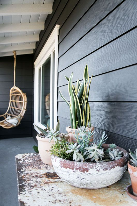 my back patio painted black with hanging chair and potted plants / sfgirlbybay