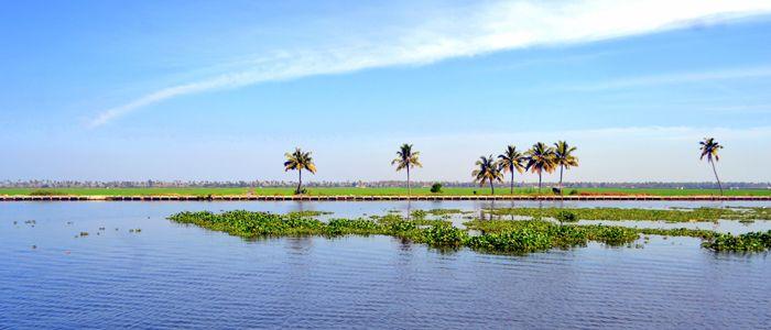 Kerala #Backwaters