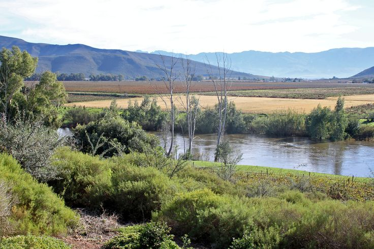 Breederiver, Robertson, Western Cape, June 2014