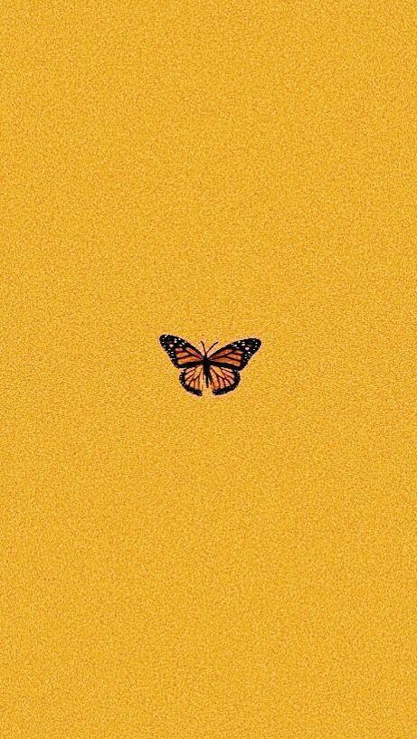 # Schmetterling # gelb # Wallaper   – Wallapers – #Gelb #Schmetterling #Wallaper…