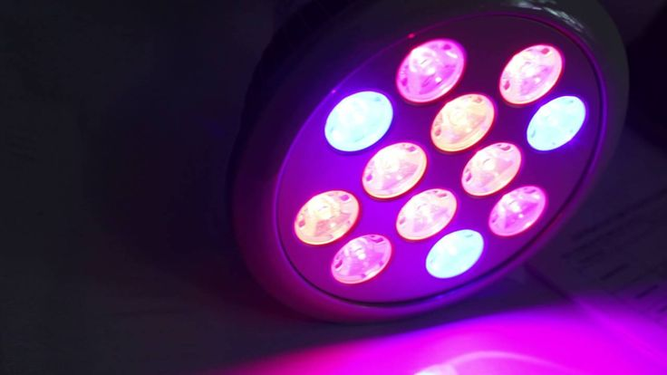 LED Grow Light bulbs 2 pack #Review