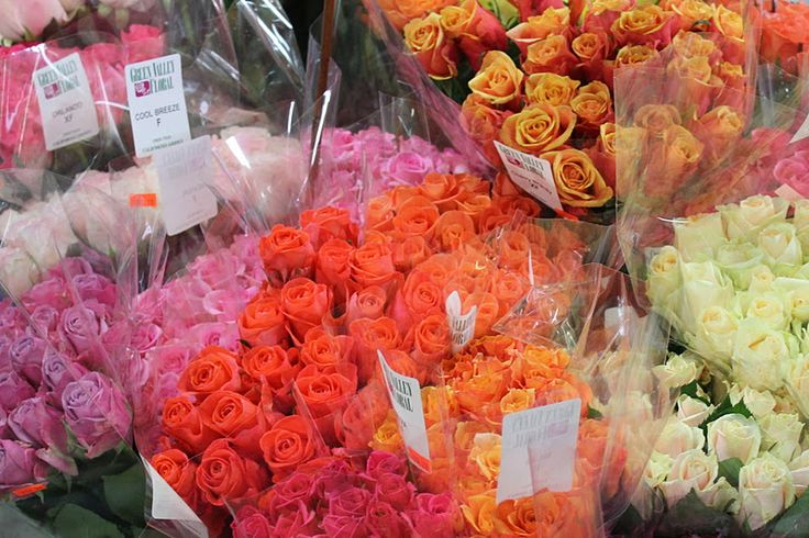 https://500px.com/jeckjech/about  Go Here For Sf Flower Mart  Flower Delivery San Francisco,Sf Flower Mart,San Francisco Flower Delivery,Flower Mart Sf,Florists San Francisco