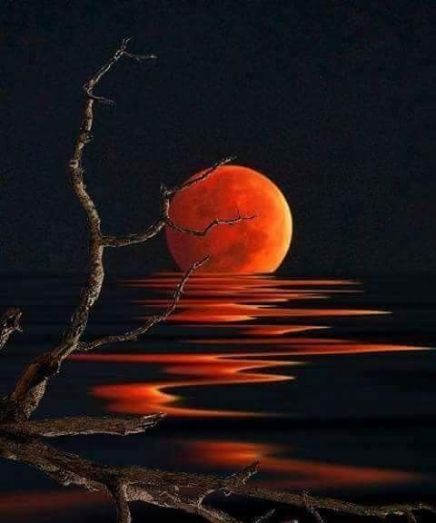 Harvest Moon, super cool moon painting, orange moon and water reflections.