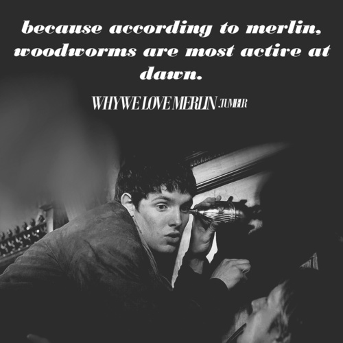 "Arthur: ""What on earth are you doing?"" Merlin: ""...Looking for woodworm."" Arthur: ""...Before breakfast?"" Merlin: ""That *is* when the worms are most active."" Arthur: ""Get out."""