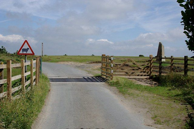 Cattle Grid onto Lady Down - Looking onto Lady Down from the road by Hallagennna Farm. 3 km N Blisland