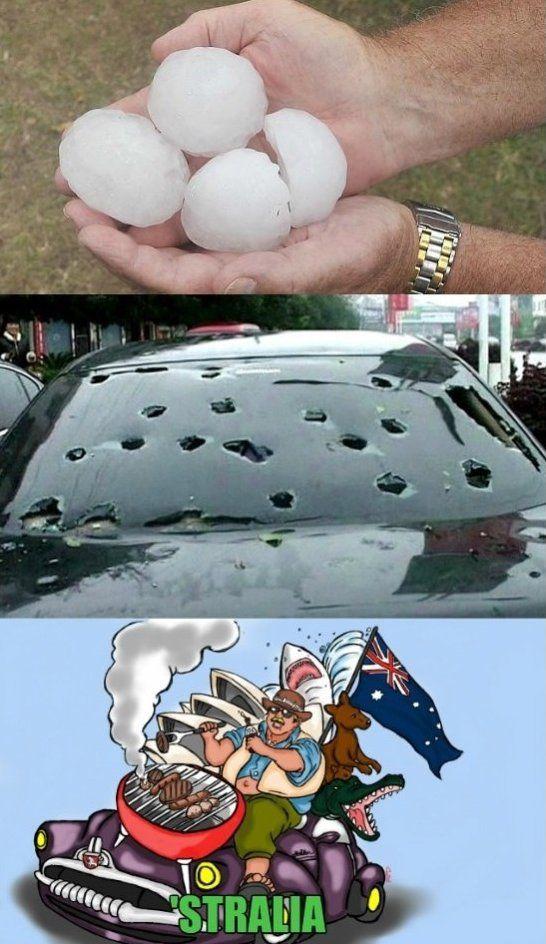 Meanwhile in Australia - www.meme-lol.com