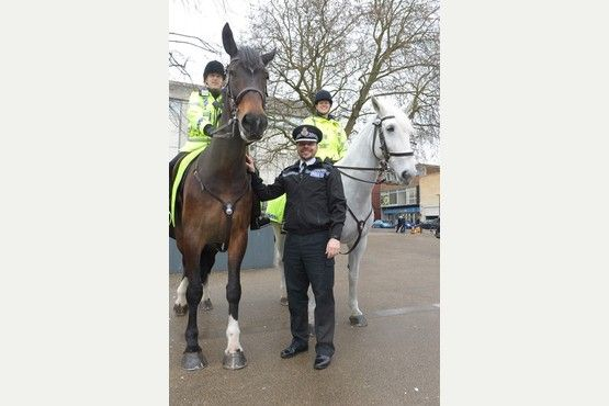 Pictures: Gloucestershire's new mounted police were out on their horses around Gloucester City centre