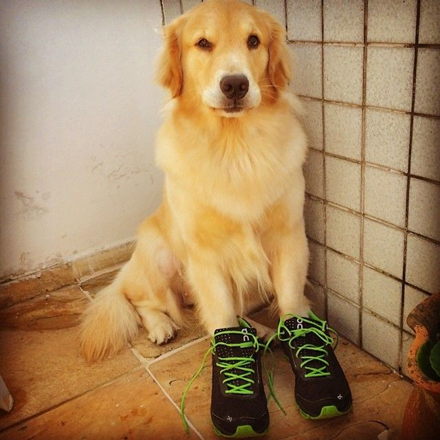 Mel On Running Shoes...:)
