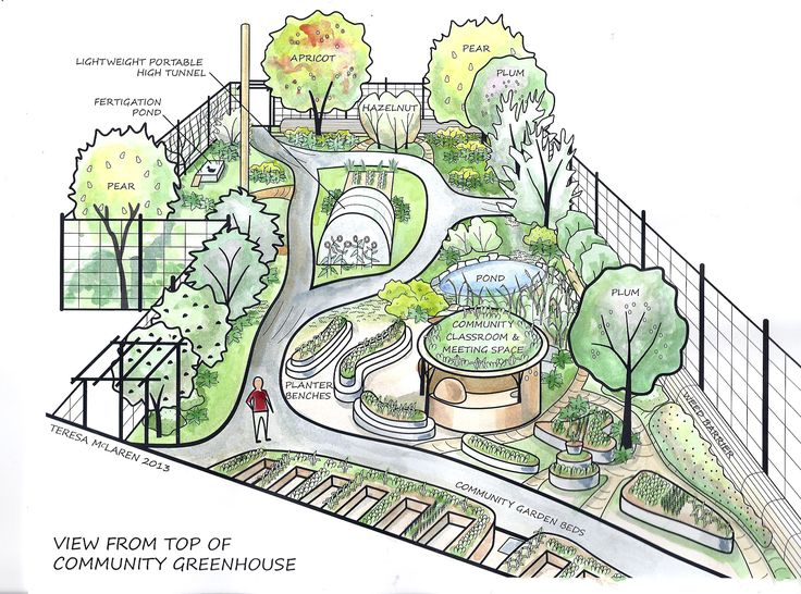 Visualization of groundswell permaculture food forest and for Permaculture garden designs