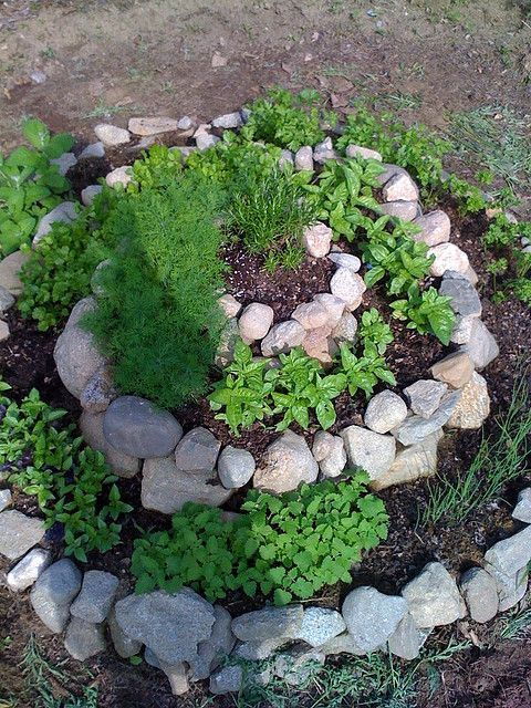 Spiral Herb Garden drought resist herbs at the top and thirsty plants at the…
