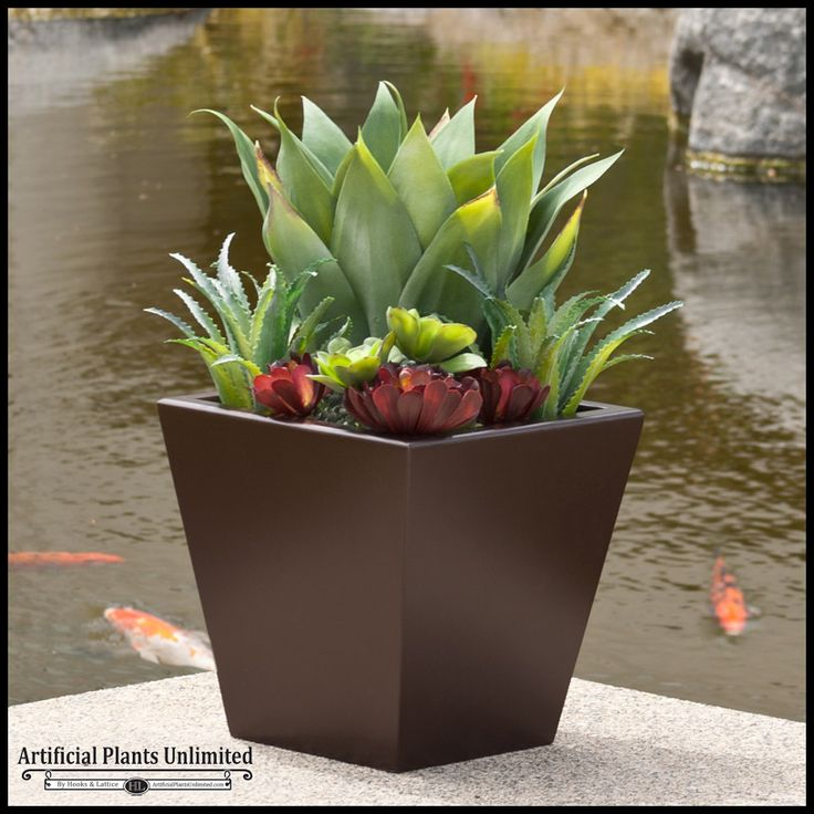 """Option   Lobby, Gathering Area   24"""" or larger scale Urban Chic Planter Agave plant"""