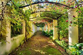 Vergelegen Wine Estate, Stellenbosch