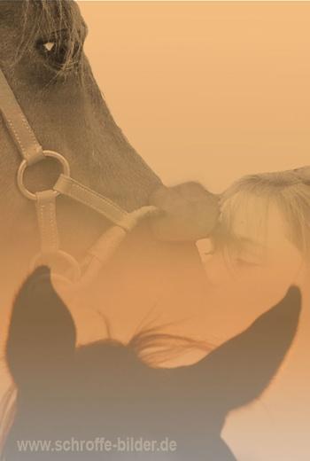 Du und Dein Pferd