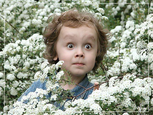 Эмоции малышей в картинках