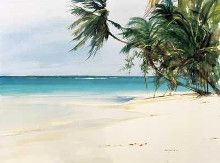 Caribbean Sea poster print by Neil Murison
