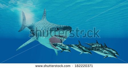 Megalodon Attack - A huge Megalodon shark swims after a pod of Striped dolphins.
