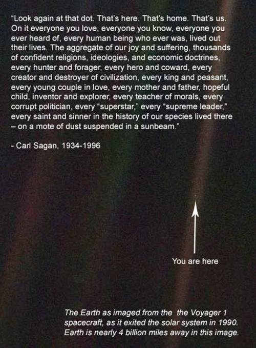 Carl Sagan... I want to be inside this mans brain  . I always take a step back and look at this, never fails, #mindblown