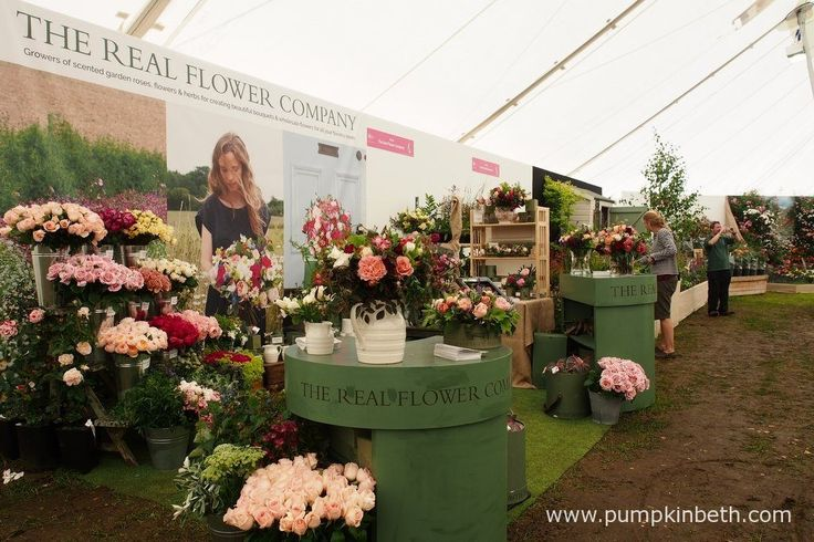 The Real Flower Company inside the Festival of Roses Marquee, at the RHS Hampton Court Palace Flower Show 2016.