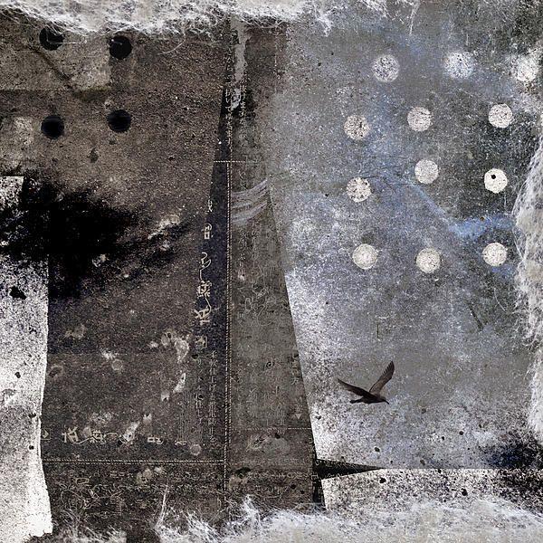 Yuki desi it is snowing by carol leigh on fine art america - Fine art america ...