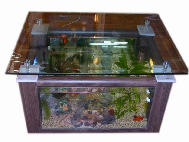 25 best ideas about cheap fish tanks on pinterest tank stand cheap cabinet hardware and - Fish tank coffee table cheap ...