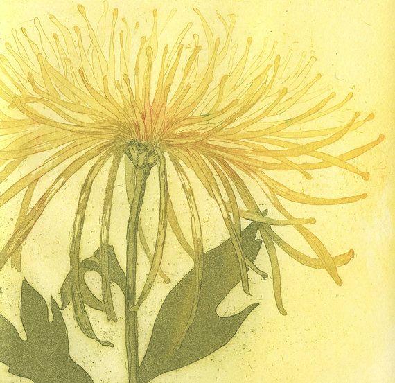 Chrysanthemum and Poppy Fine Art Etching of by stephaniemartinart, $120.00