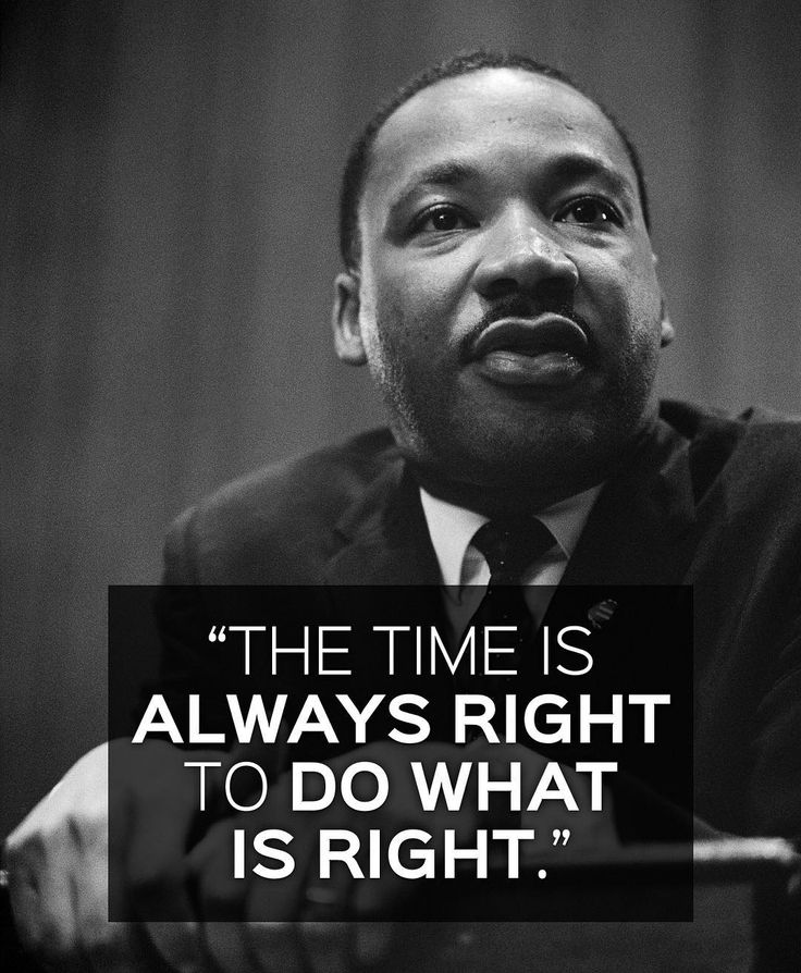 Martin Luther King Jr. and Animal Rights Inspiring