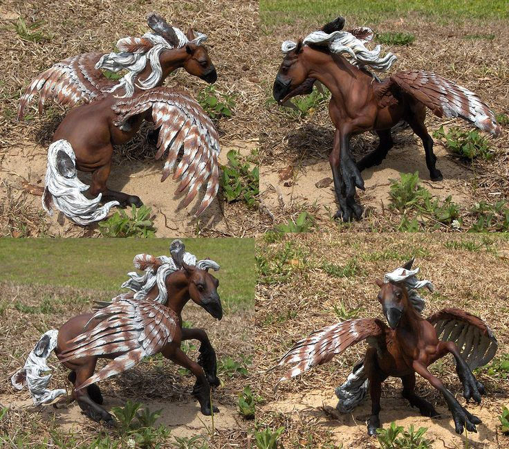 Best Breyer Horses And Horse Toys : Best hippogriffs images on pinterest fantasy