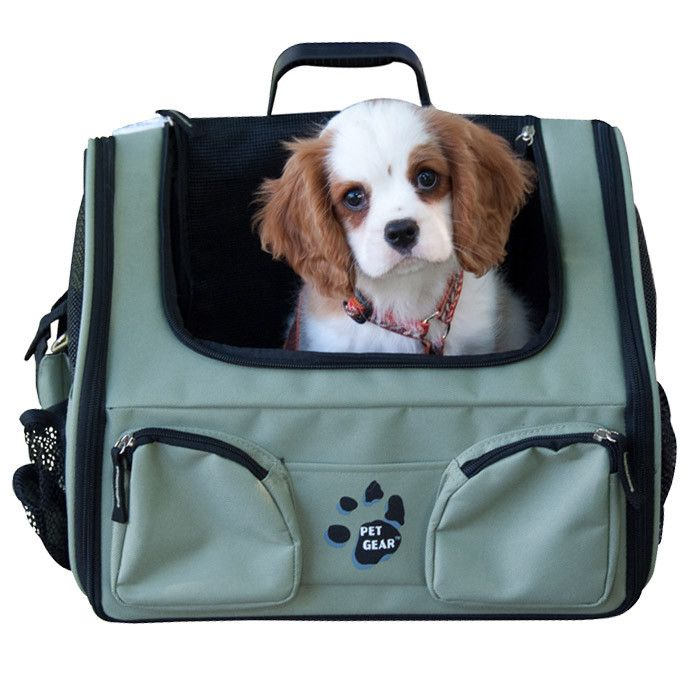 112 best puppy accessories images on Pinterest   Bunny cages, Baby ...