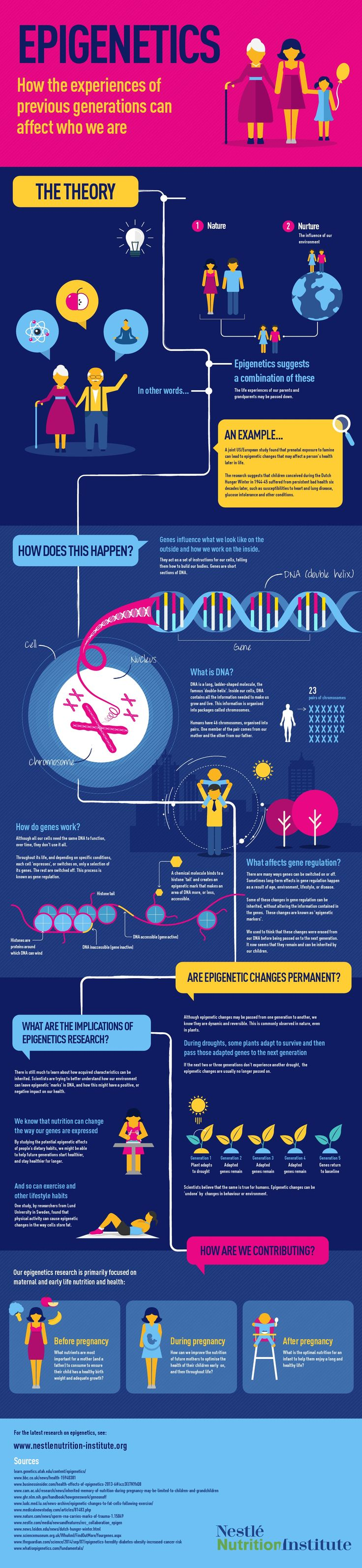 What is epigenetics? The science of how our inherited (nature) genes can be altered through lifestyle (nurture) -- including nutrition, exercise, stress, and environment.