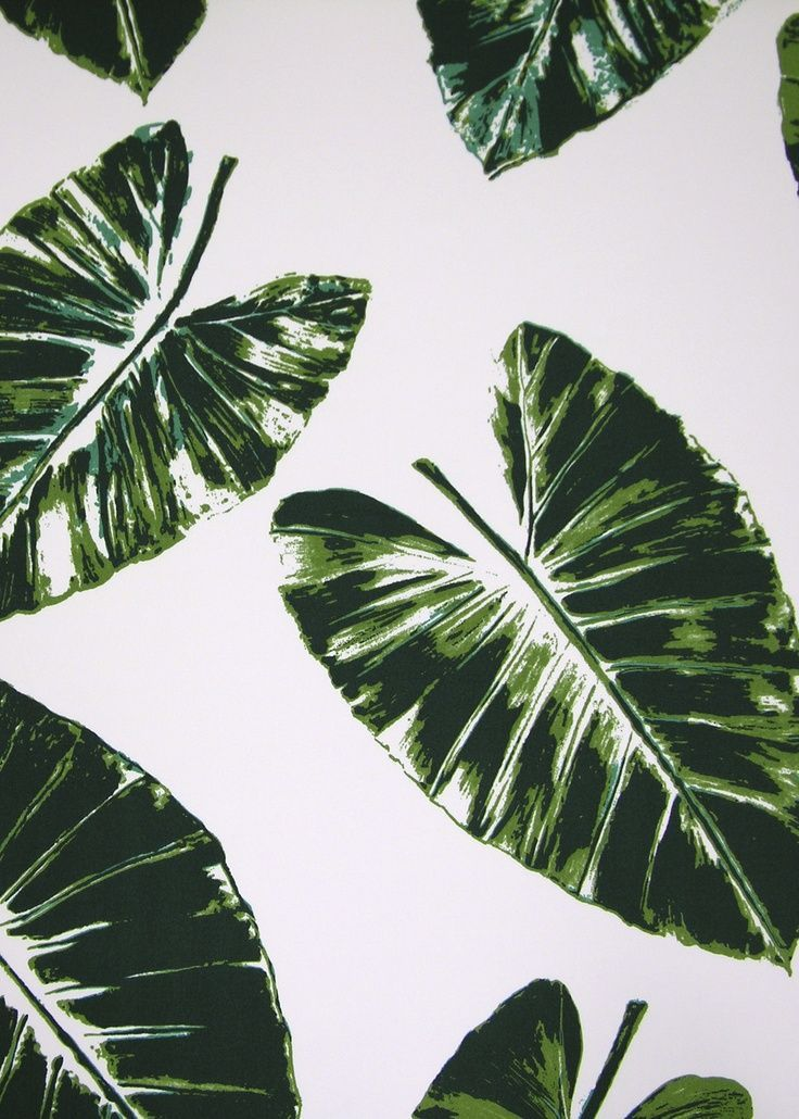 rose cummings by dessin fournir green banana leaves  Google Search  palms + pineapples
