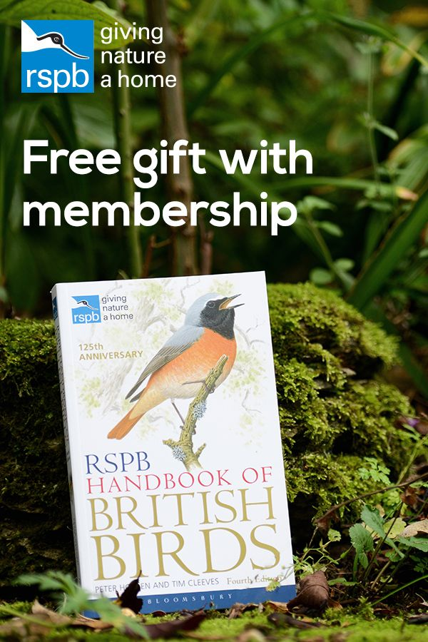 When You Join The RSPB Can Choose A Free Gift To Go With Your